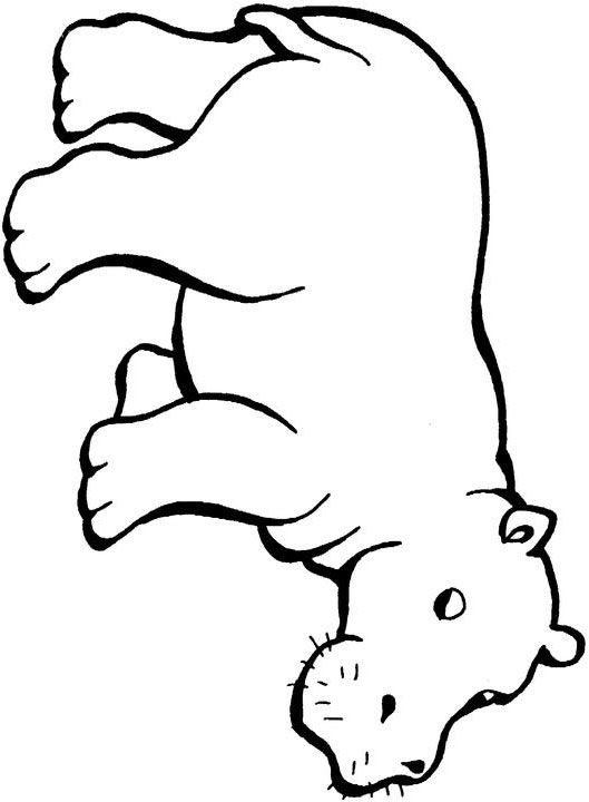 coloring hippo clipart free hippo images for kids download free clip art free coloring clipart hippo