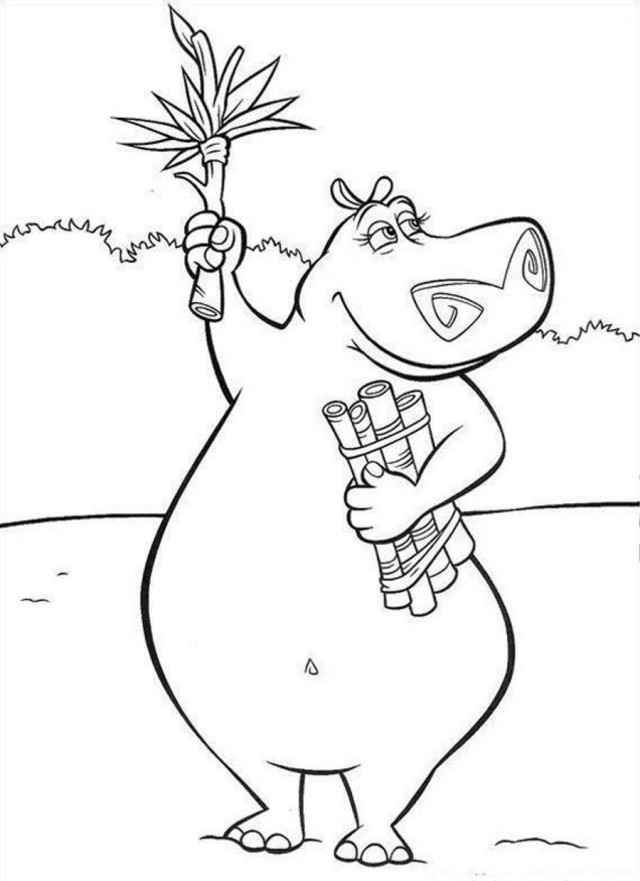 coloring hippo clipart hippo images for kids clipartsco clipart coloring hippo