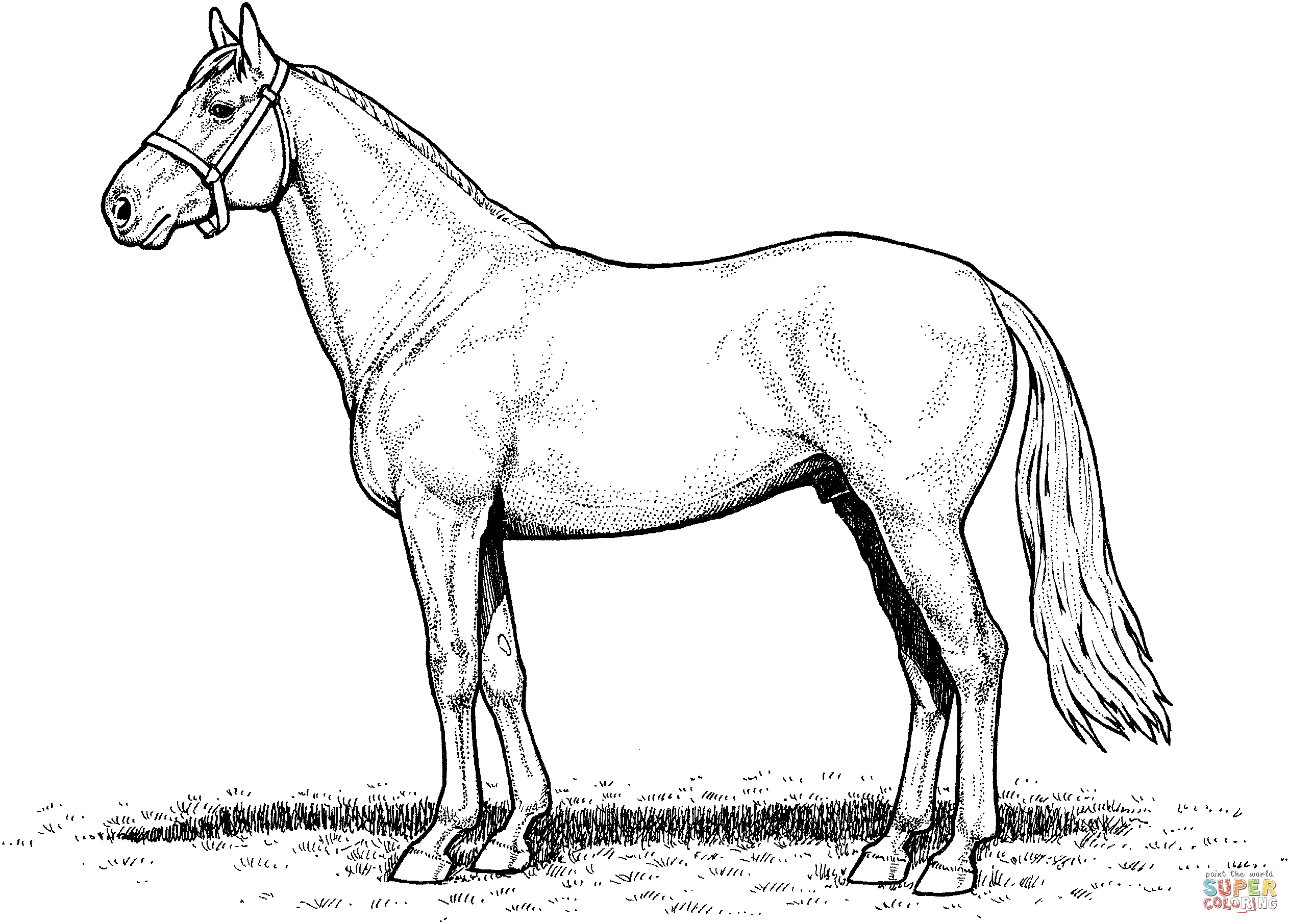 coloring horses printable horse coloring pages preschool and kindergarten horses coloring printable