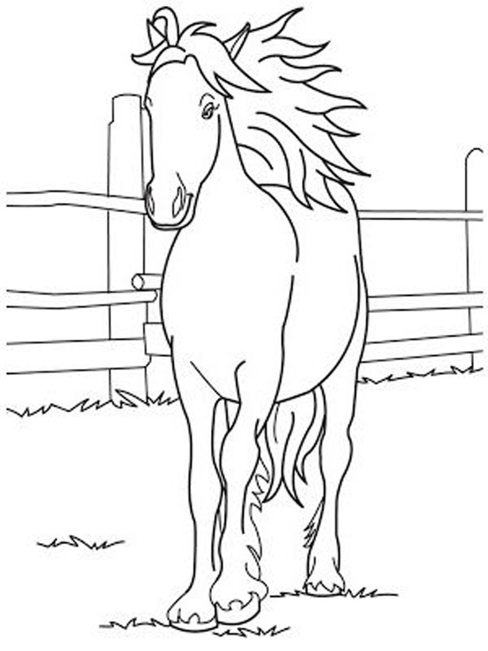 coloring horses printable horse coloring pages preschool and kindergarten horses printable coloring