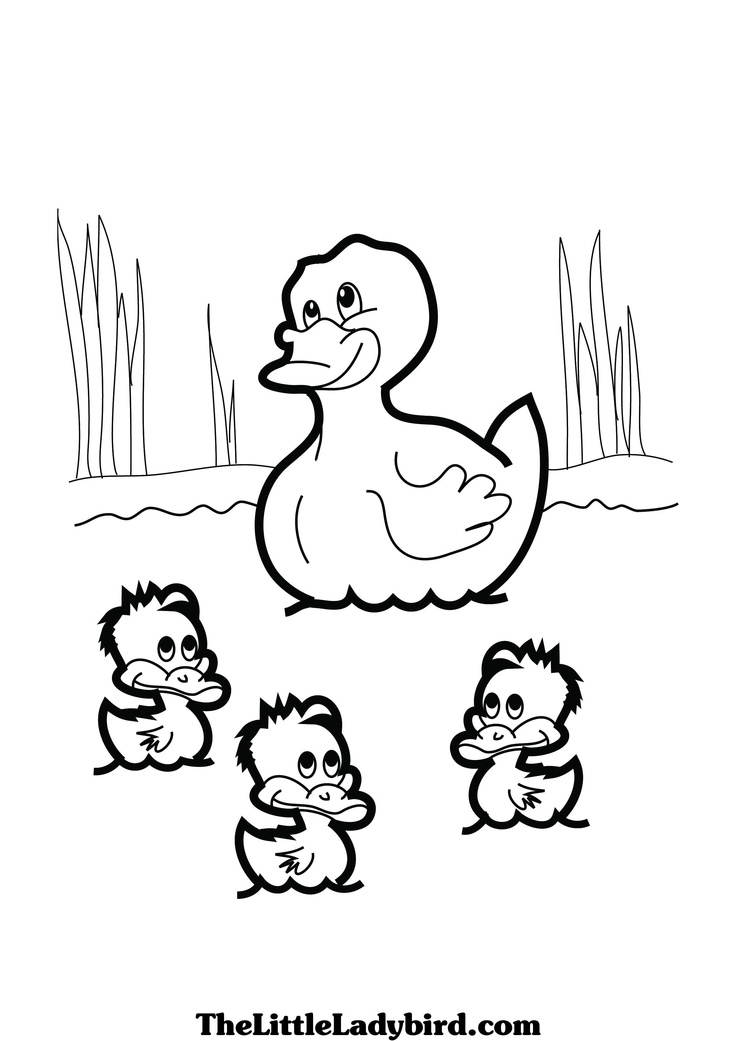 coloring image of duck printable duck coloring pages for kids cool2bkids image of coloring duck