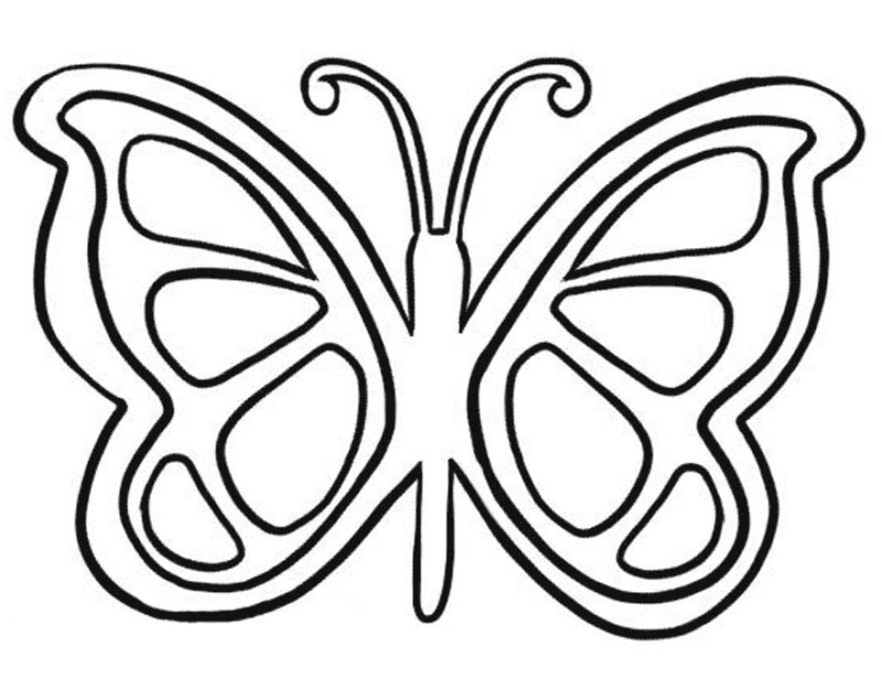 coloring images of butterfly free butterfly drawing at getdrawings free download images butterfly coloring of