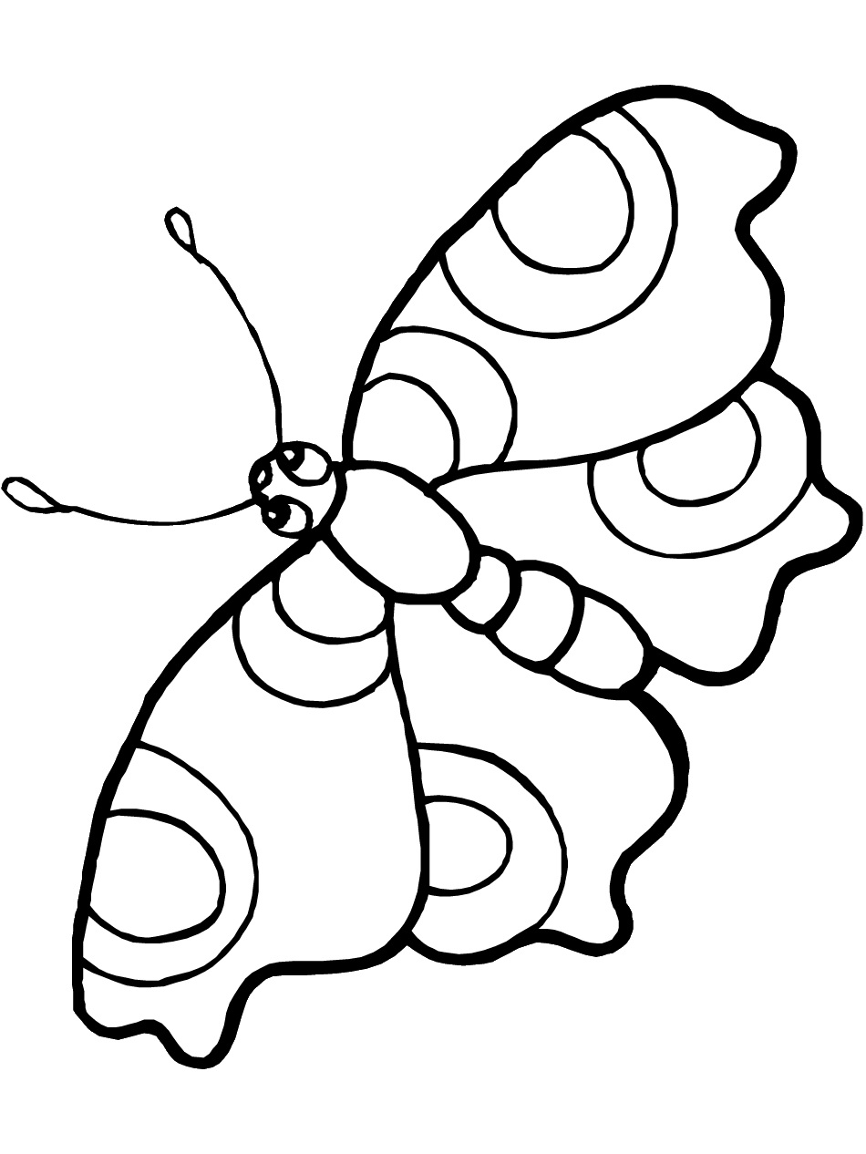 coloring images of butterfly free printable butterfly colouring pages in the playroom butterfly of coloring images