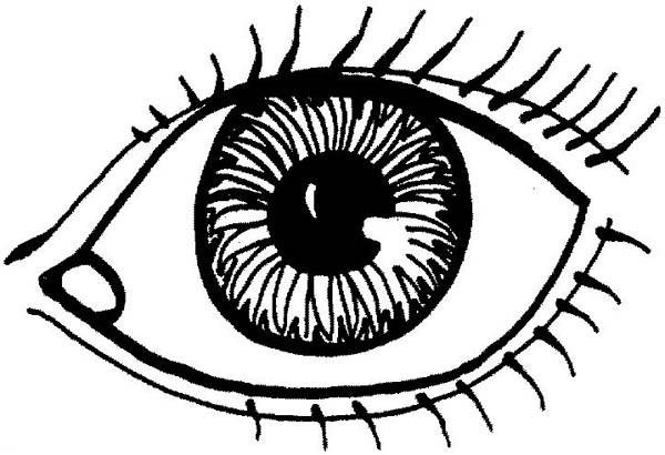coloring images of eyes eye coloring pages getcoloringpagescom coloring eyes of images