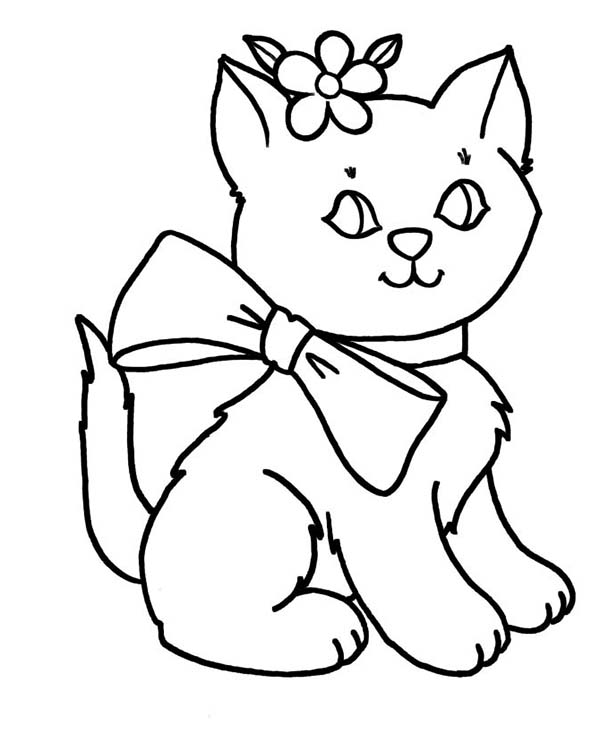 coloring kitty cat beautiful kitty cat in lovely outfit coloring page kids kitty cat coloring