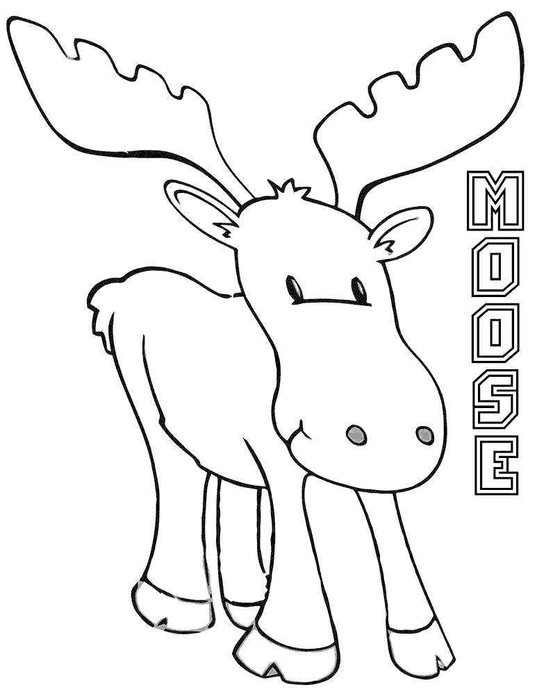coloring moose moose coloring pages drawing pictures free printable moose coloring
