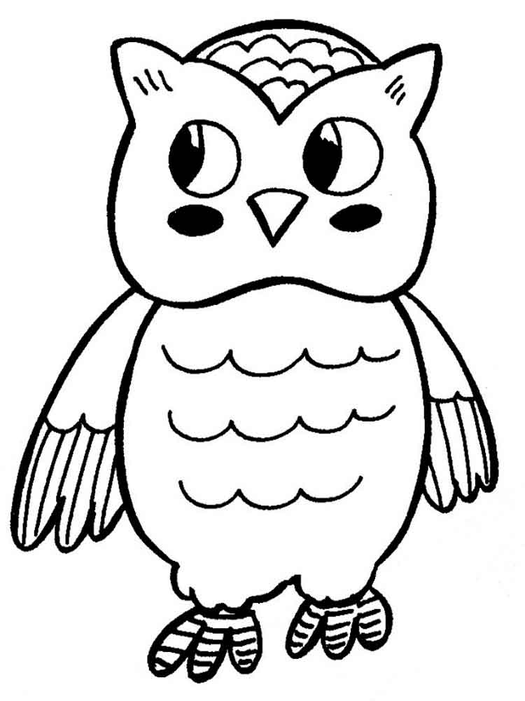 coloring owls free printable owl coloring pages for kids cool2bkids coloring owls