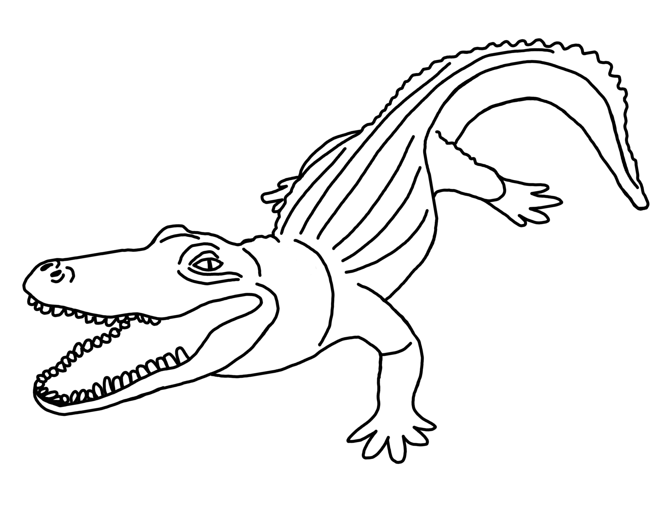 coloring page alligator alligator coloring pages stpetefestorg page alligator coloring