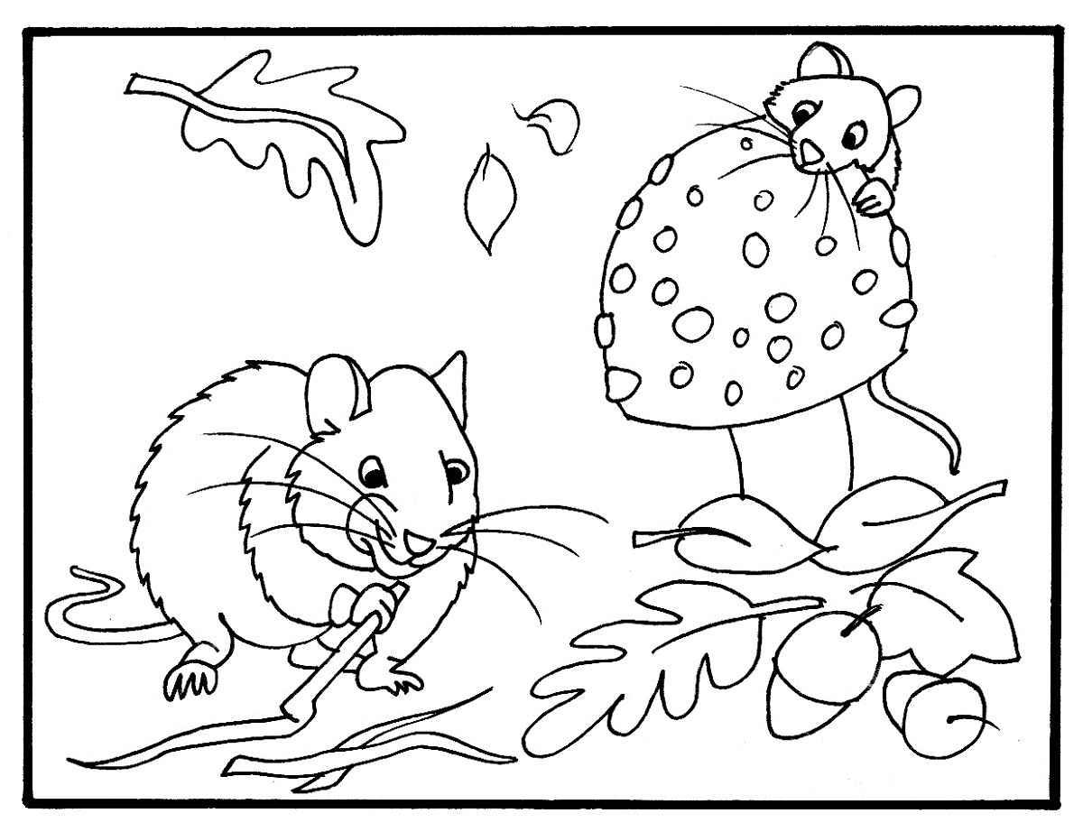 coloring page autumn fall coloring pages coloring kids coloring kids autumn coloring page