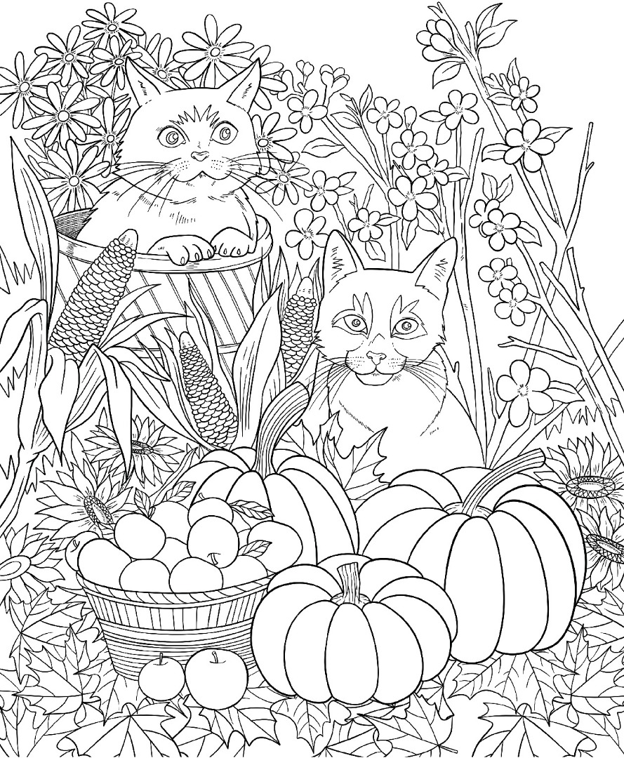 coloring page autumn fall harvest autumn coloring pages printable for kids page coloring autumn