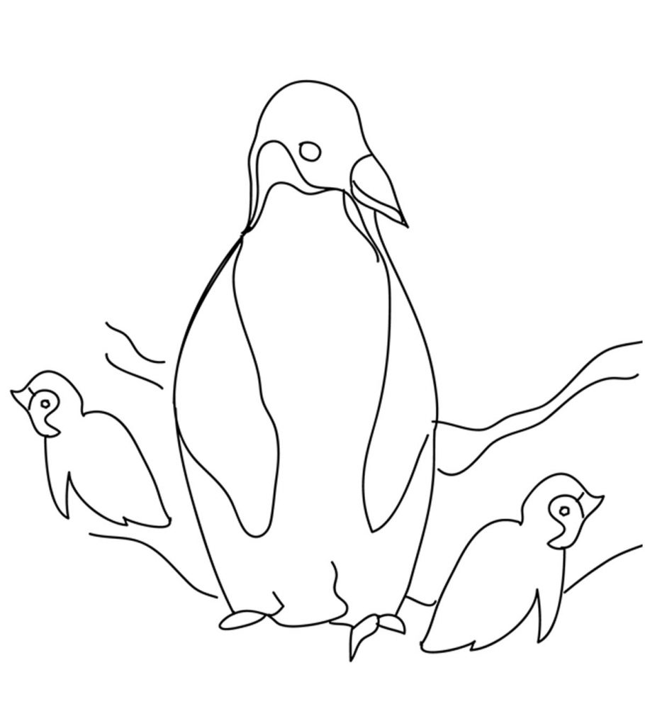 coloring page of penguin penguin coloring pages free printable for kids penguin coloring of page