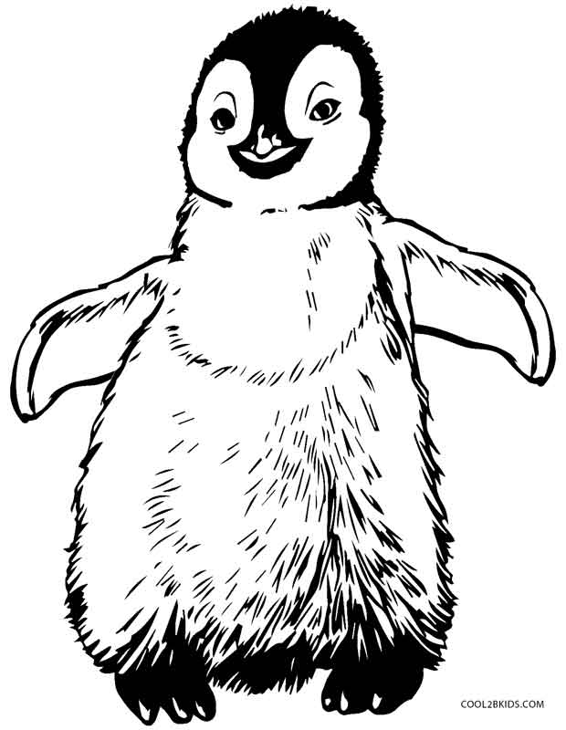 coloring page of penguin printable penguin coloring pages for kids cool2bkids penguin coloring of page