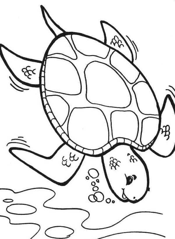 coloring page of sea turtle coloring pages turtles free printable coloring pages coloring sea of page turtle