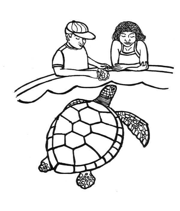 coloring page of sea turtle feeding sea turtle coloring page download print online turtle coloring page sea of