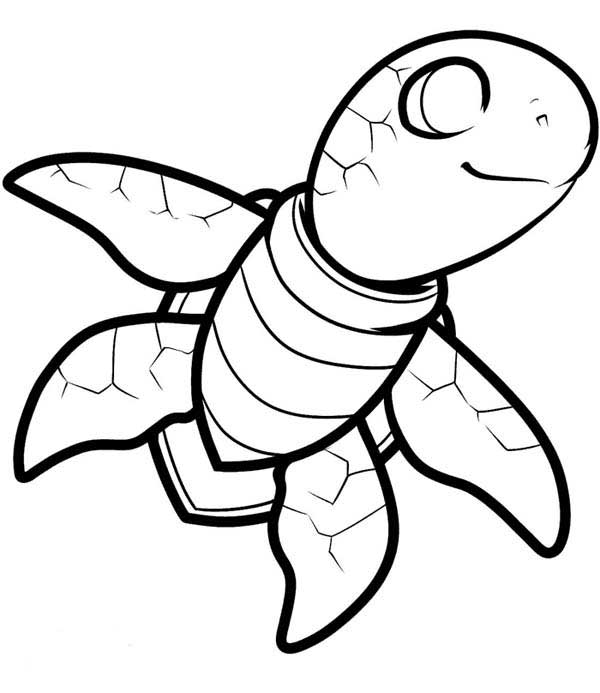 coloring page of sea turtle free smiling sea turtle coloring page download print coloring of turtle sea page