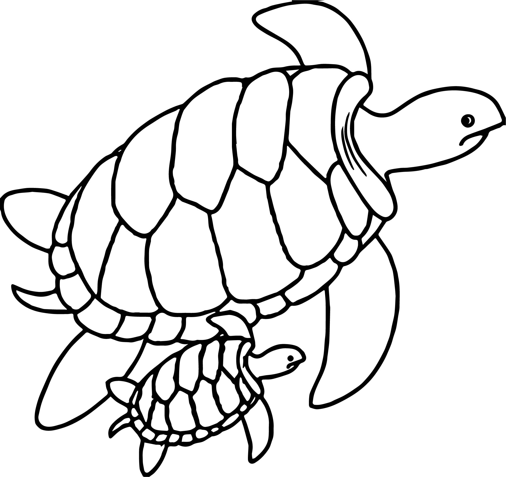 coloring page of sea turtle printable sea turtle coloring pages for kids cool2bkids coloring of turtle page sea