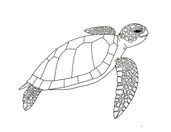 coloring page of sea turtle sea turtle coloring pages for adults at getcoloringscom of sea page turtle coloring
