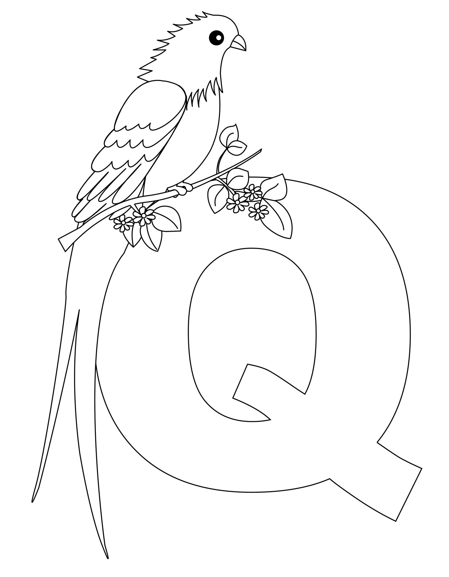 coloring page q letter q perfect handwriting alphabet colouring page coloring q page