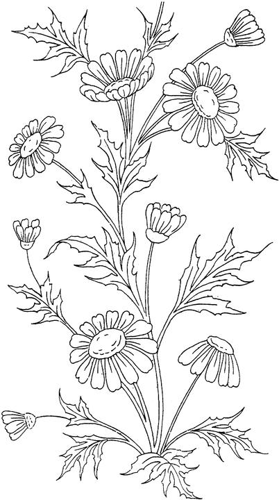 coloring pages for adults to print flowers flowers coloring pages minister coloring adults for print flowers pages coloring to