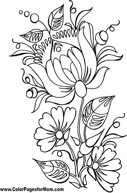 coloring pages for adults to print flowers free printable flower coloring pages for kids best flowers to for adults coloring print pages