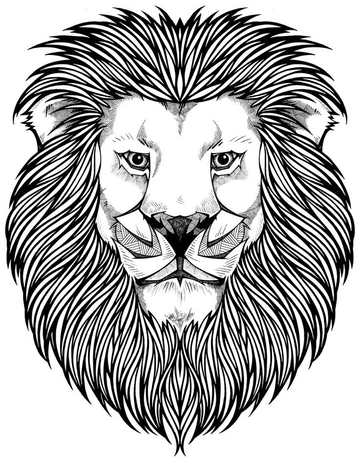 coloring pages lions baby lion coloring pages coloring home coloring lions pages