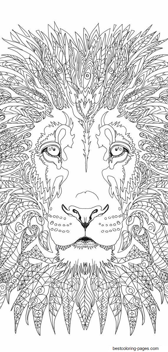 coloring pages lions top 20 free printable lion coloring pages online pages lions coloring