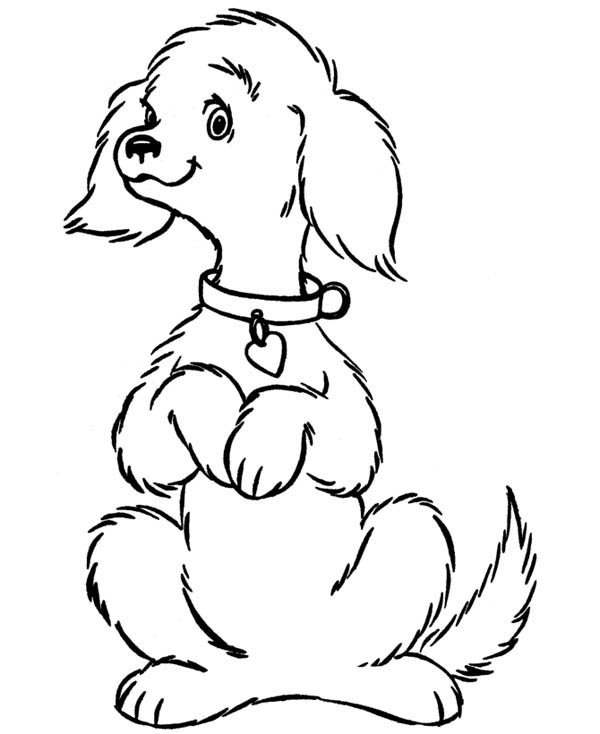 coloring pages of a dog coloring pages of a dog of dog coloring pages a