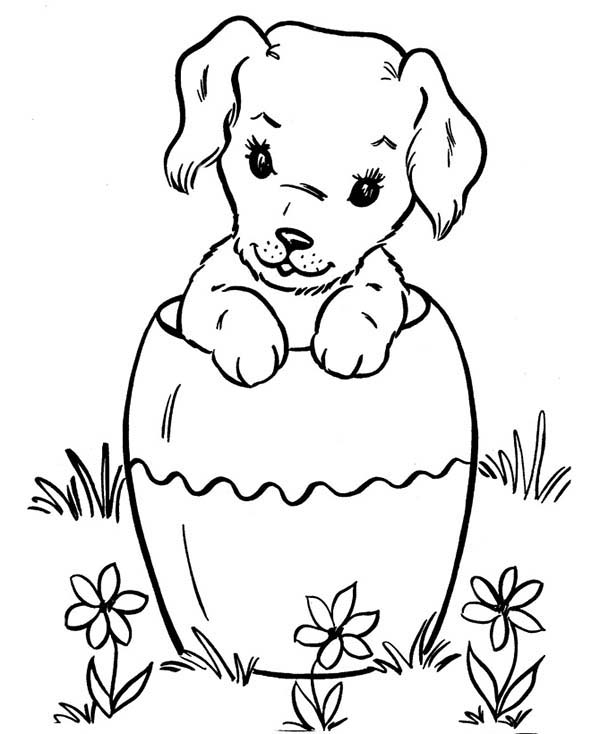 coloring pages of a dog dog breed coloring pages a pages of dog coloring