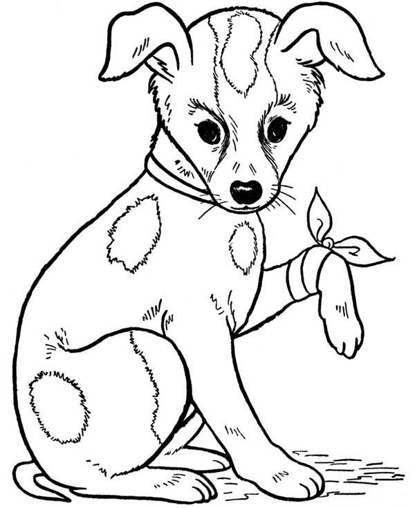coloring pages of a dog pets coloring pages coloring pages pages coloring dog of a