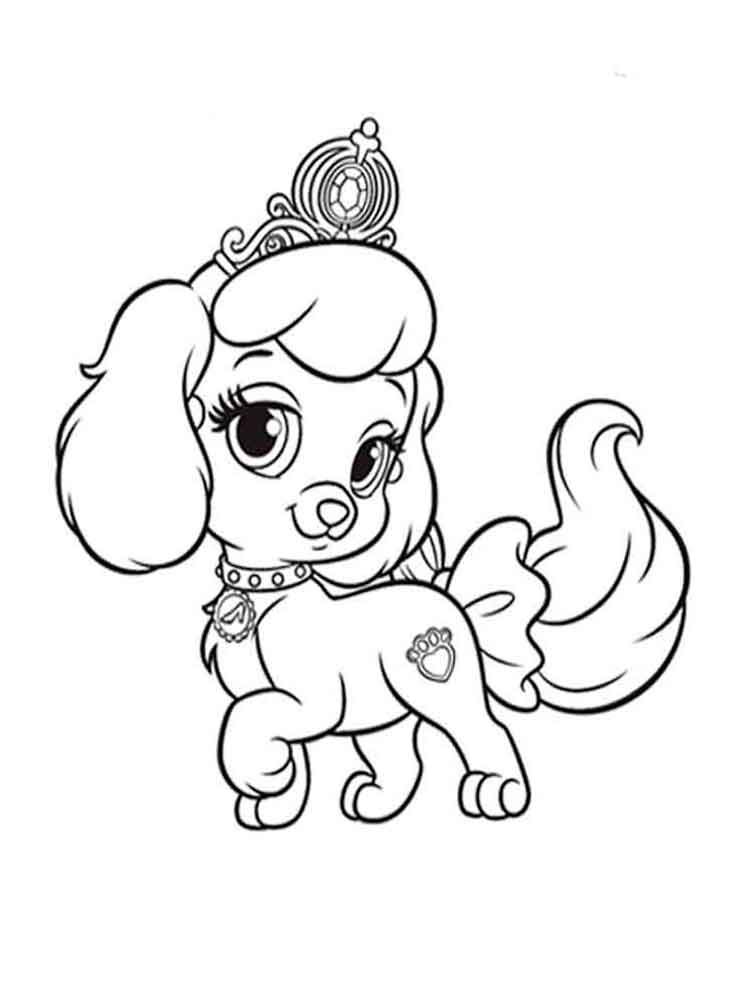 coloring pages of a dog small dog coloring pages coloring home a dog pages coloring of