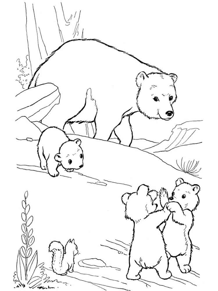 coloring pages of bears to print bear coloring pages download and print bear coloring pages of print pages to coloring bears