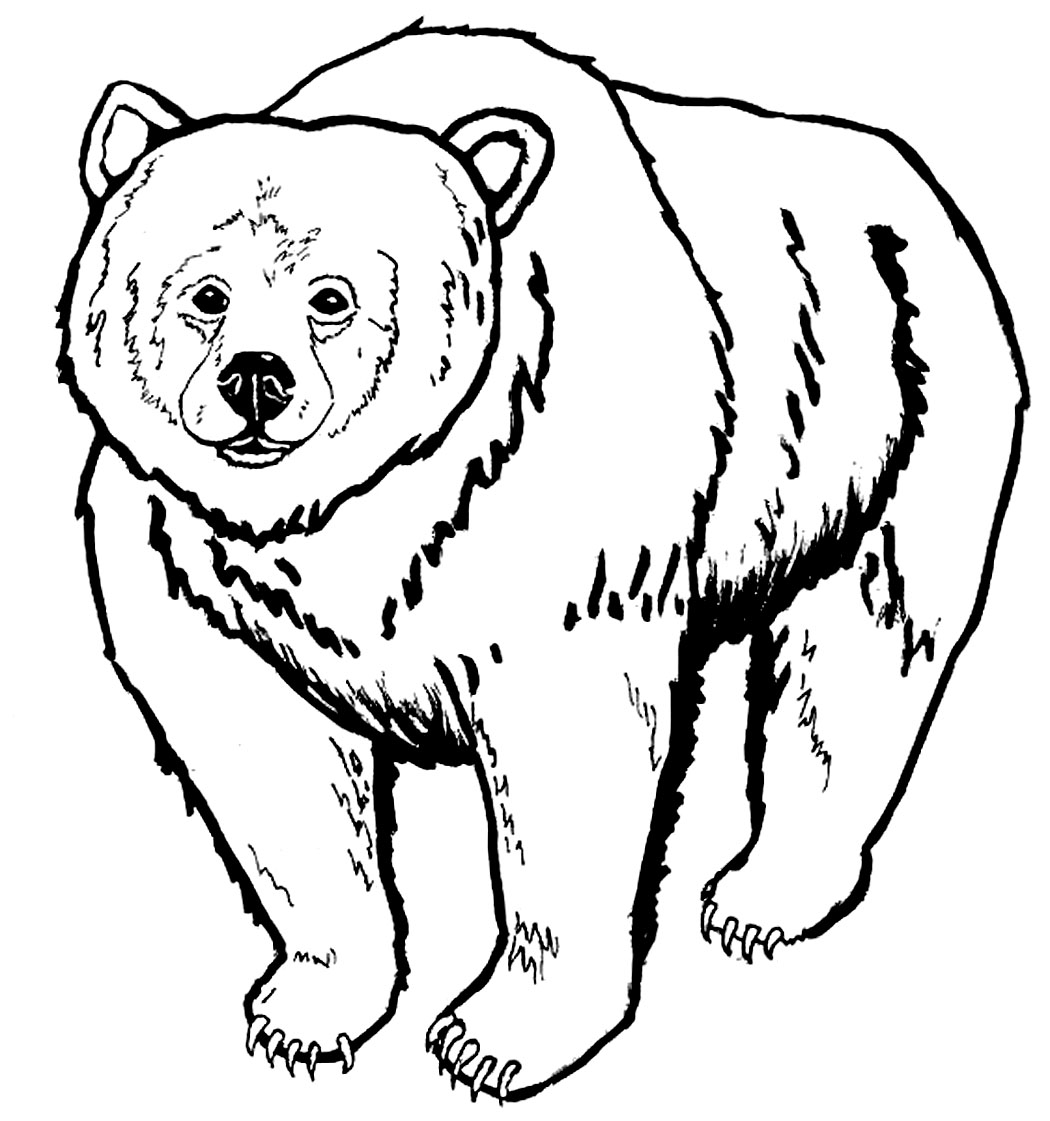 coloring pages of bears to print i love you more and more youtube of bears to coloring pages print