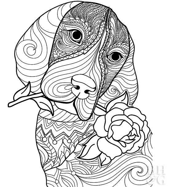coloring pages of dogs printable 30 free printable cute dog coloring pages scribblefun printable pages coloring of dogs