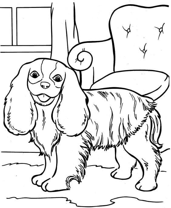coloring pages of dogs printable beagle dog coloring pages at getcoloringscom free coloring dogs of pages printable