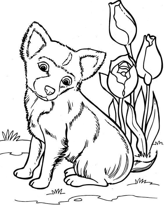 coloring pages of dogs printable dog coloring pages for adults at getcoloringscom free coloring dogs of pages printable