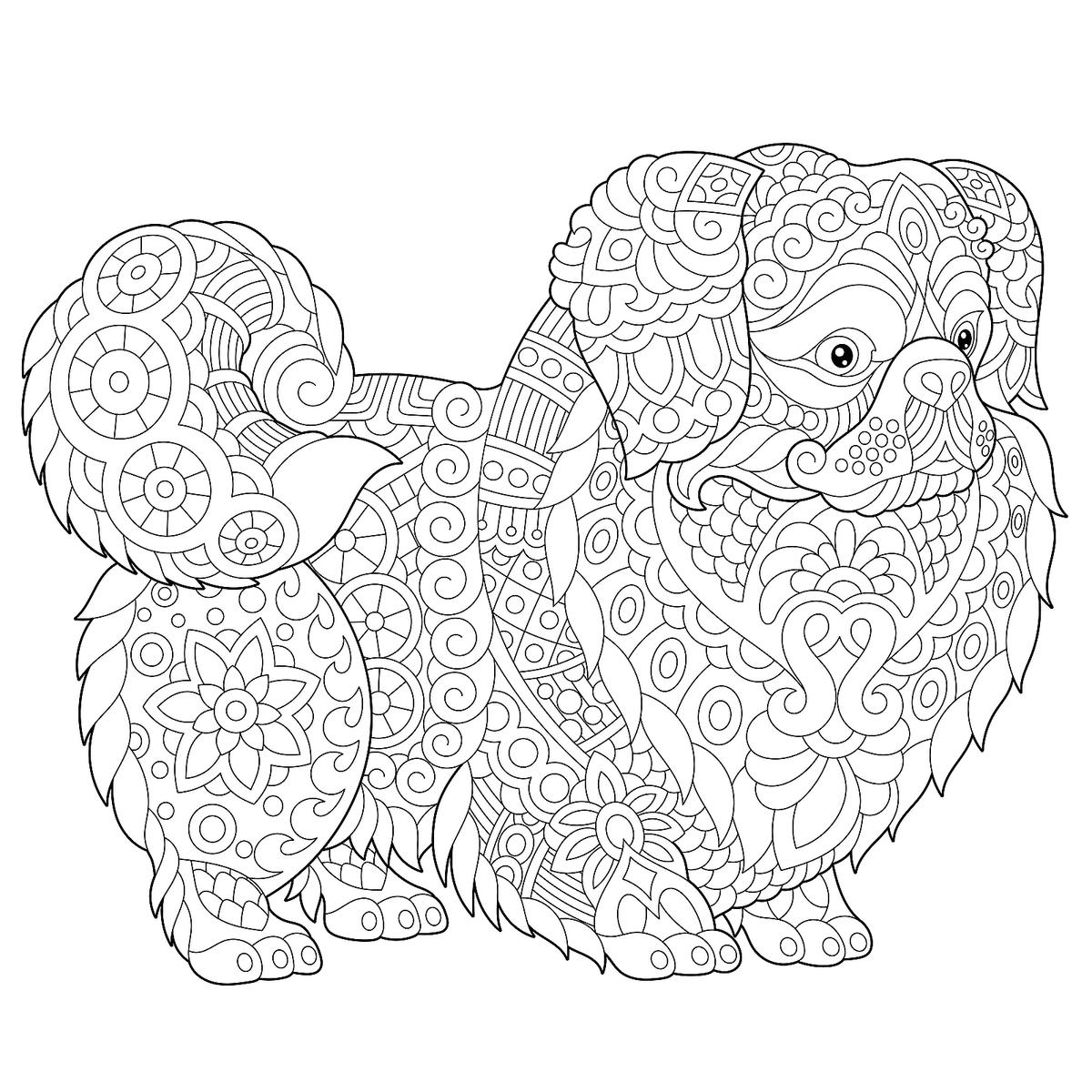 coloring pages of dogs printable printable puppy dog pals coloring book pages 02 dogs coloring of pages printable
