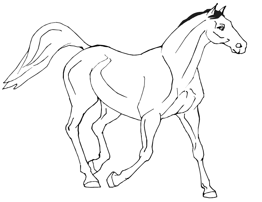 coloring pages of horse cartoon horse coloring pages free printable cartoon horse pages of horse coloring