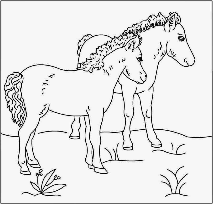 coloring pages of horse realistic horse coloring pages to print coloring home of horse coloring pages