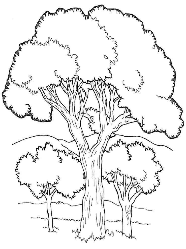 coloring pages of tree fall tree coloring pages getcoloringpagescom tree coloring of pages