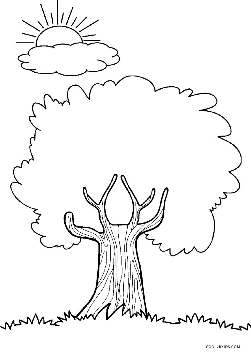 coloring pages of tree tree coloring pages getcoloringpagescom pages coloring of tree