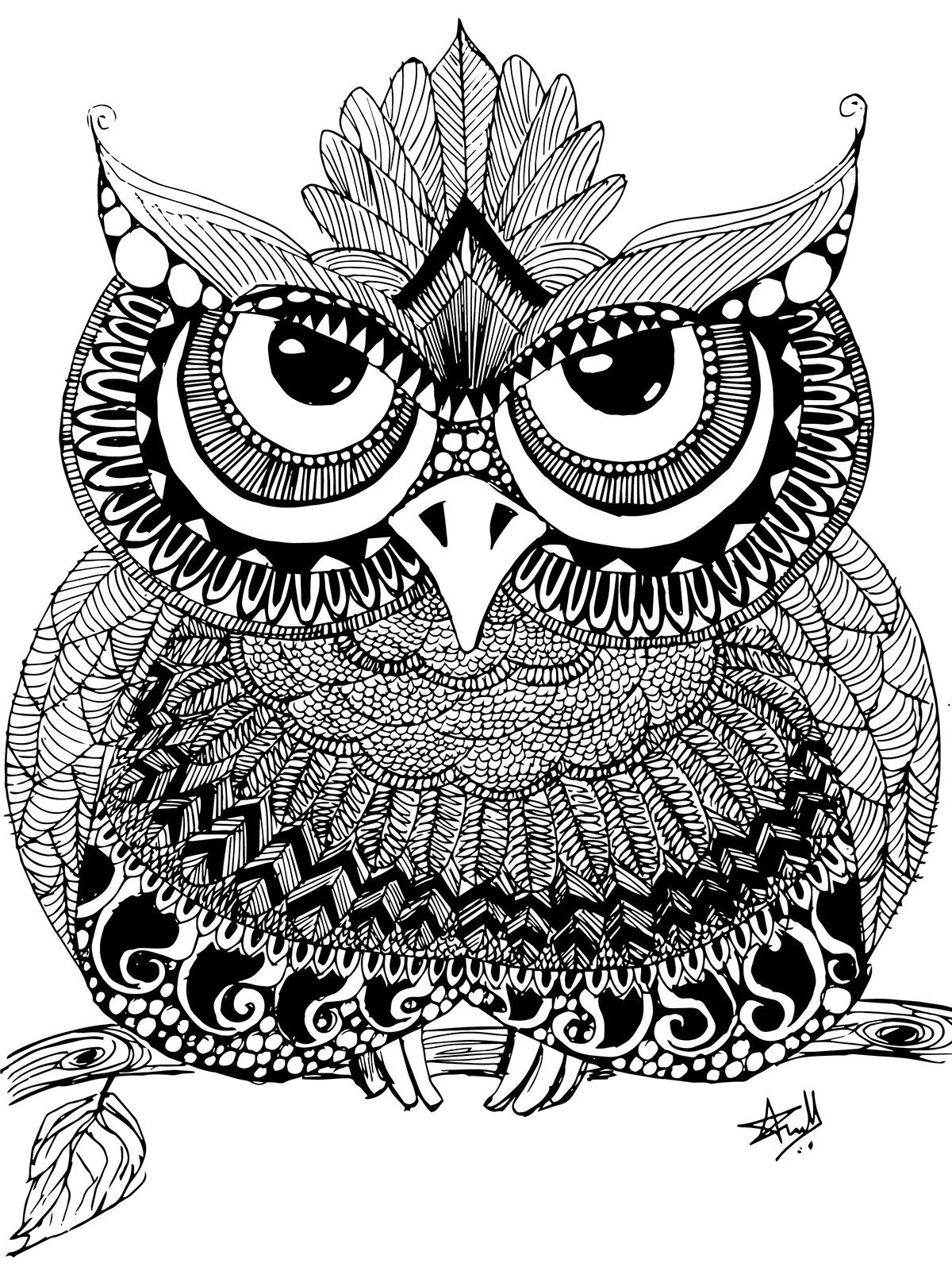 coloring pages zentangle zentangle owl on behance owl coloring pages owl zentangle zentangle pages coloring
