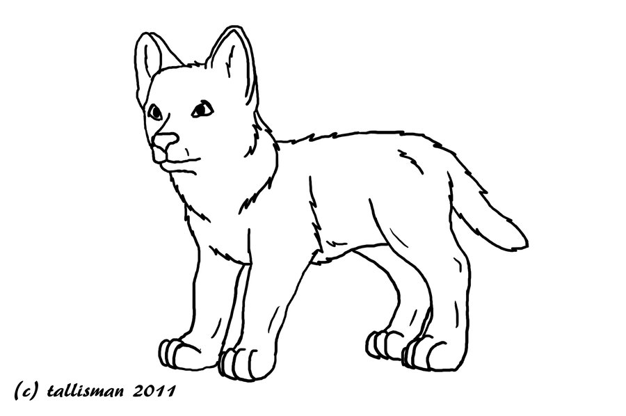 coloring picture of a wolf coloring picture of a wolf wolf of coloring a picture
