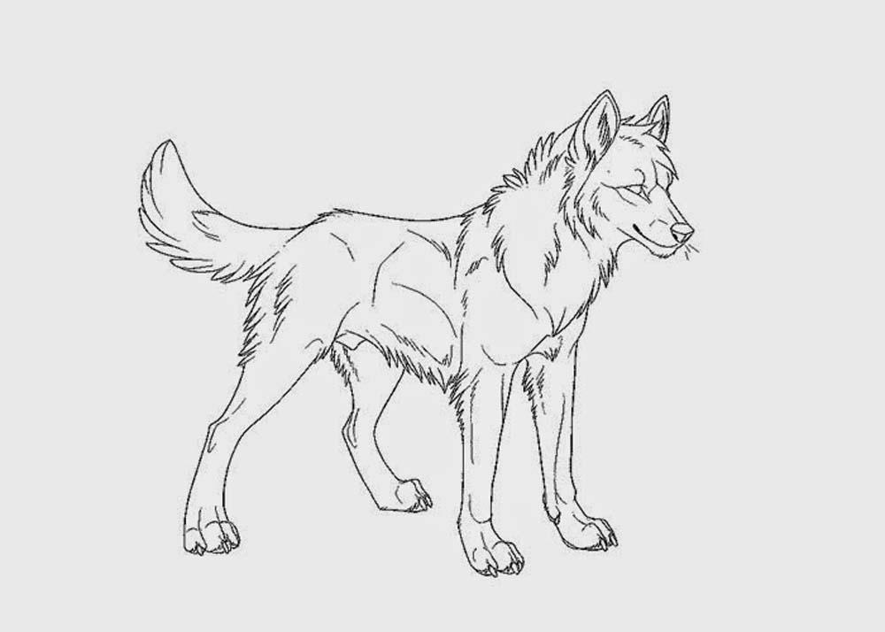 coloring picture of a wolf free wolf coloring pages picture wolf of a coloring
