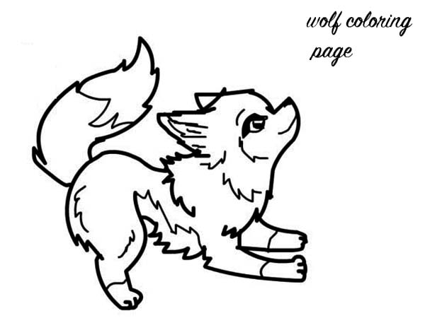 coloring picture of a wolf realistic wolf coloring pages png free realistic wolf coloring of wolf picture a