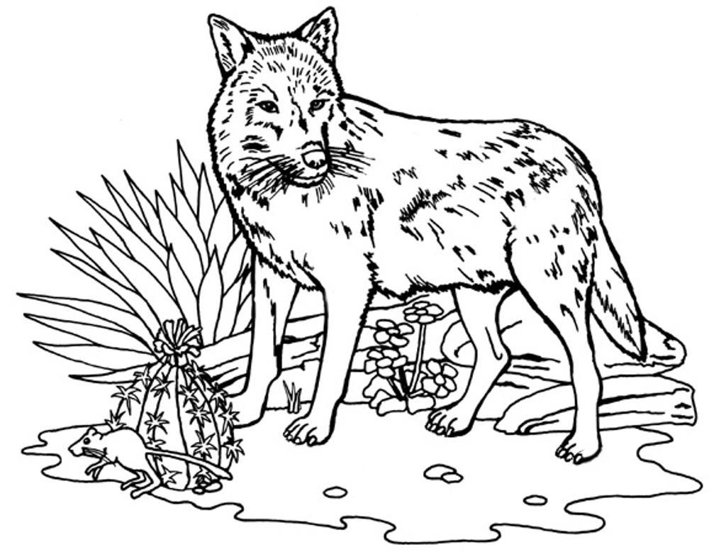 coloring picture of a wolf wolf howling coloring page download print online of picture coloring a wolf
