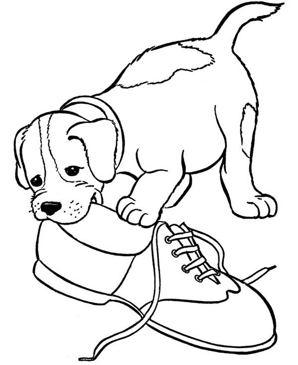 coloring picture of puppy best coloring page dog coloring sheets of dogs picture puppy of coloring