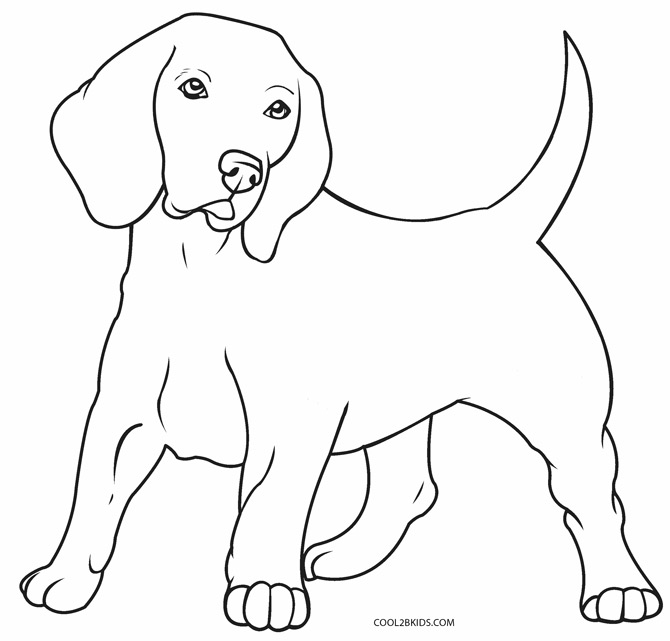 coloring picture of puppy dog breed coloring pages of coloring puppy picture
