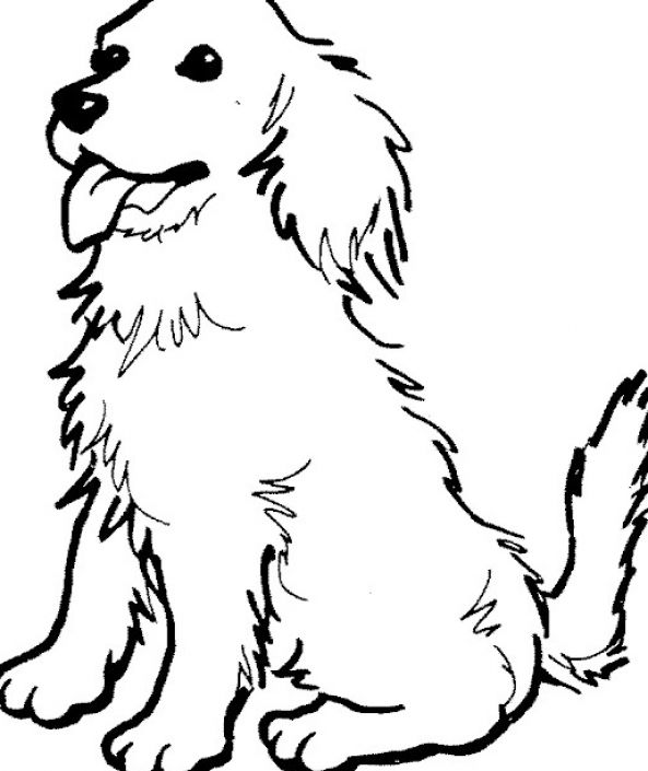 coloring picture of puppy pet puppy play with shoe coloring page coloring sky puppy picture of coloring