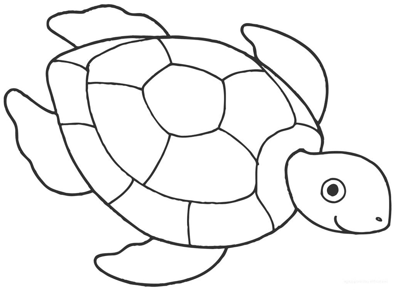 coloring picture turtle cute turtle coloring pages getcoloringpagescom turtle picture coloring