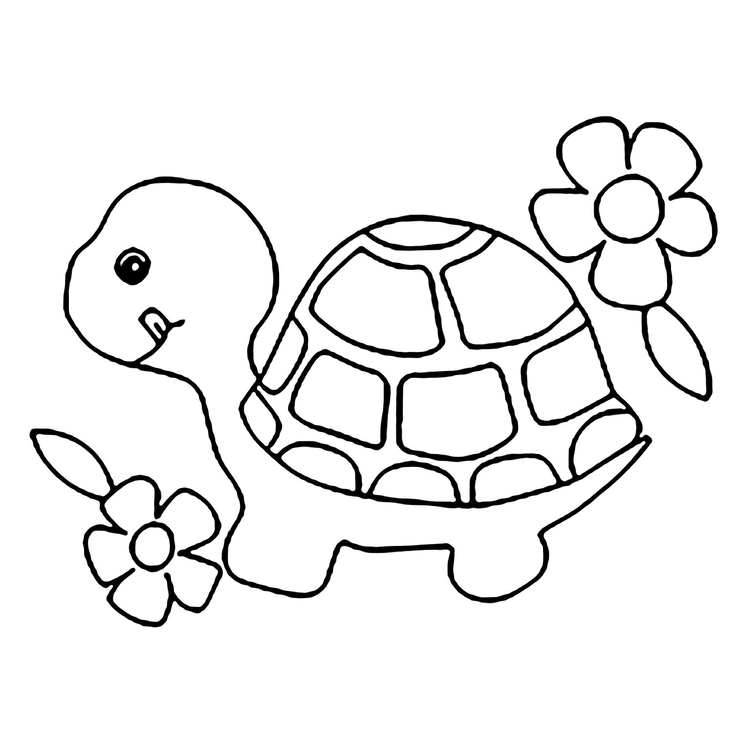 coloring picture turtle free printable turtle coloring pages for kids turtle picture coloring